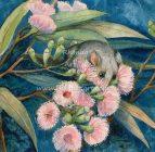 Rhonda's Art – Eastern Pygmy Possum 1