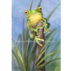 Rhonda's Art – Green Frog 1