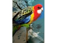 Aussie Spinners – Tea Towel - Parrot