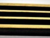 Australian Mallee Art – Pen Holder - Australian Ancient Redgum Gold Leaf