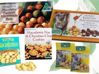 Koala Farms – Milk Chocolate & Macadamia