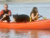 Australis Canoes - Bushranger Canoe