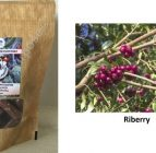 Chocolate On Purpose – Milk Chocolate with Riberry (Daguba)